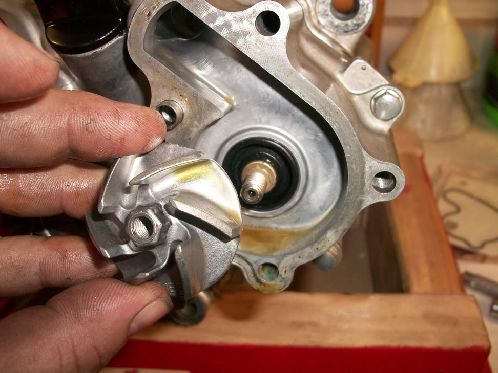 Excellent Crfs Only How To Rebuild The Water Pump On A Honda Crf450R Wiring 101 Mecadwellnesstrialsorg